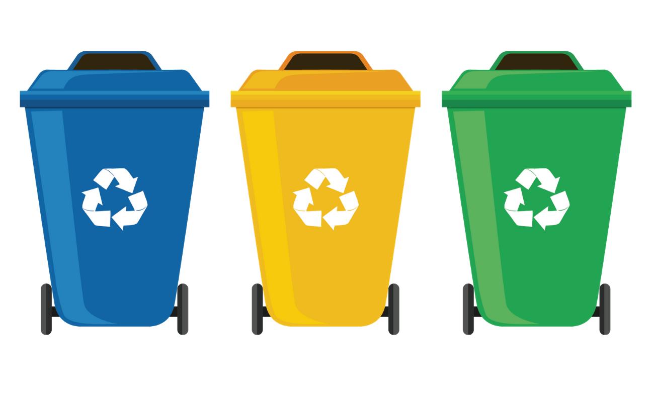 Which Waste Goes in Which Bin